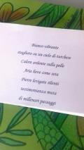Cecilia Castelli, poesia